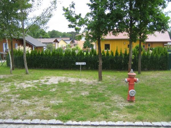 Stellplatz für Strandhaus Nr. 38